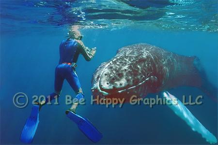 Bee Happy Graphics